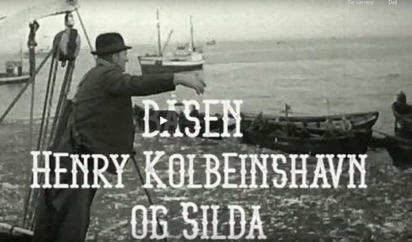 Basen Henry Kobleinshavn
